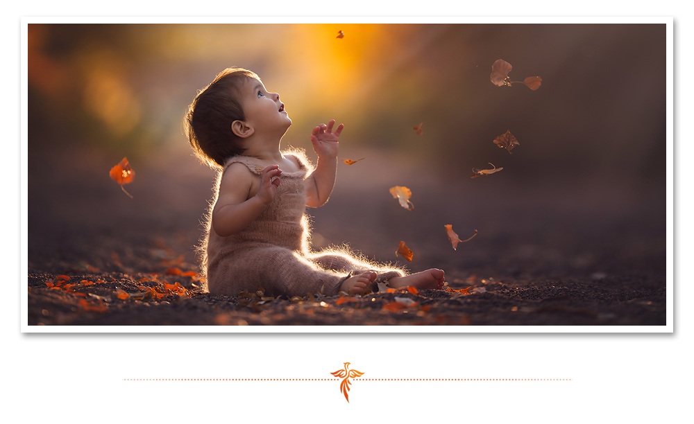 Little baby boy watches fall leaves fall to the ground from the trees. LJHolloway Photography is a Las Vegas Child Photographer.
