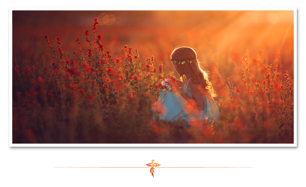 Little girl in a blue dress picks orange wildflowers in a sunny field. LJHolloway Photography is a Las Vegas Child Photographer.